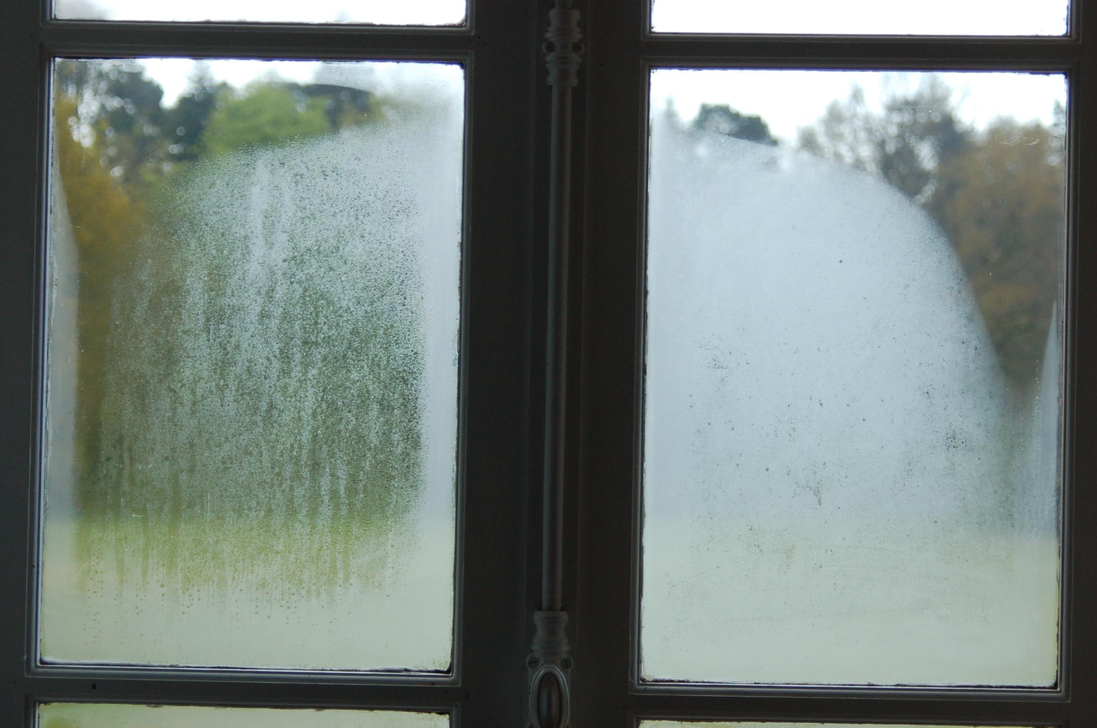 humidite dans votre maison ce qu 39 il faut savoir le mulot. Black Bedroom Furniture Sets. Home Design Ideas